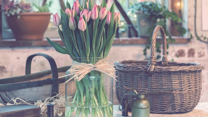 spring to your home